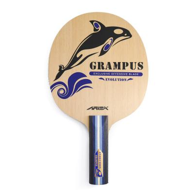 Ariex Grampus Evolution ping pong