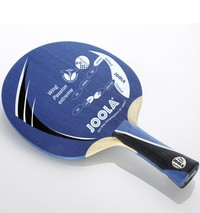 JOOLA Wing Passion Extreme ping pong